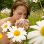 Strona internetowa o alergiach – treść dla alergików