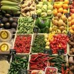 Różnorodne przepisy na potrawy, które są smaczne i zdrowe